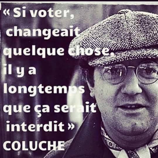Si voter changeait quelque chose il y a longtemps que ça serait interdit. Coluche